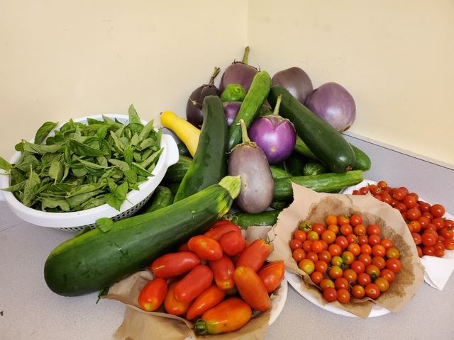 Community Food Program, COVID-19