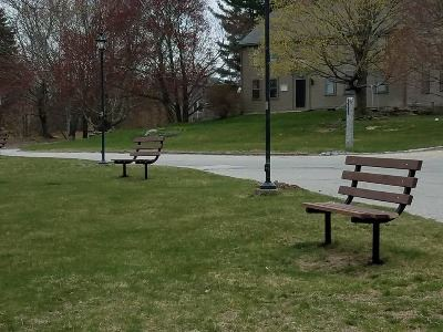 Downtown Common Benches