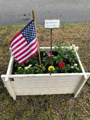 Downtown Beautification Committee Flower Box